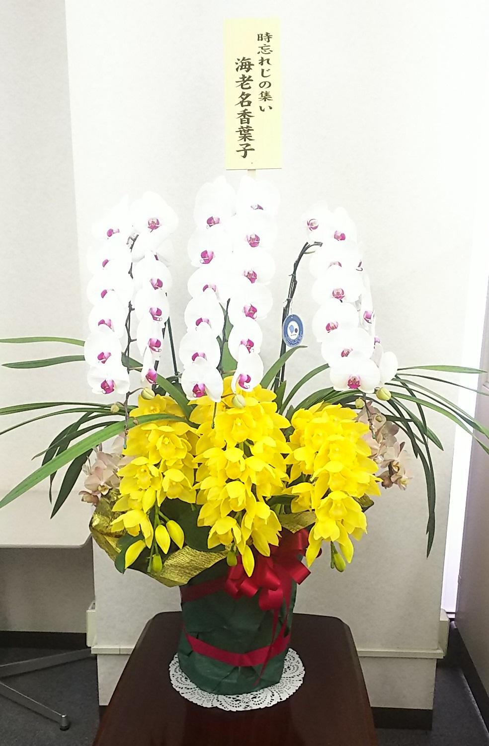 海老名香葉子さんより見事なお花を頂きました